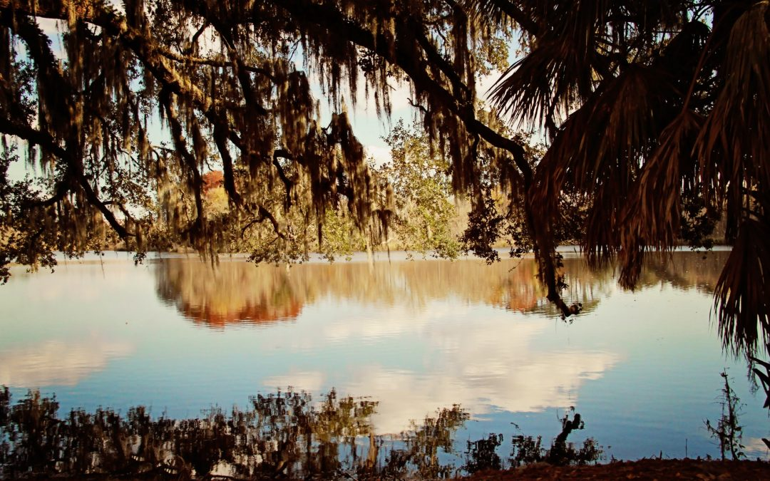 Parks in Gainesville, Florida, to Visit